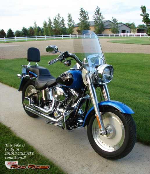 Harley Boss Hawg: Ron's Rad Rides, LLC (Harleys, Choppers, Specialty